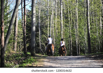 Horsewoman in fall forest