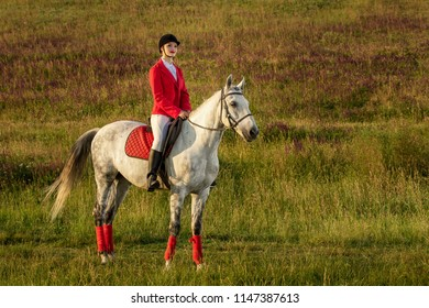The horsewoman on a red horse. Horse riding. Horse racing. Rider on a horse.