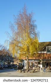 HORSHAM WEST SUSSEX/UK - NOVEMBER 30 : View of the Lynd Cross in Horsham West Sussex on  November 30, 2018. Unidentified people