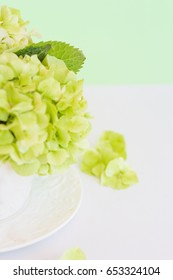 Hortensia flowers in a white cup