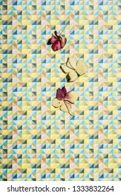 Hortensia petals on geometric patterned colorful background. Abstract conception.