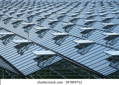 Horticultural greenhouse from above, with a lot of opened windows for optimal ventilation in the crop.