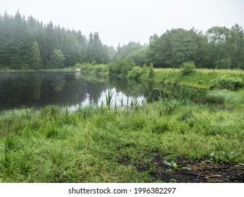 czechKrušné hory mountain landscape in foggy weather - Shutterstock ID 1996382297