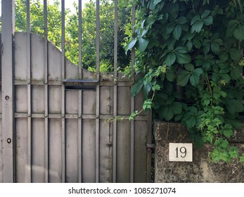 Hose gate number and leaves on wall