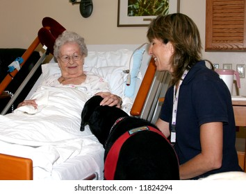 A hospice patient enjoys the company and interaction with a therapy dog and her gentle careworker.