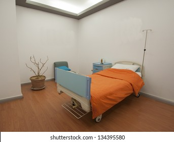Hospital bed in a private ward ward with a plant