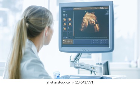 In the Hospital, Obstetrician Uses Transducer for Ultrasound/ Sonogram Screening / Scanning Belly of the Pregnant Woman. Computer Screen Shows 3D Image of the Healthy Forming Baby.