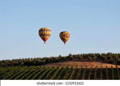 Hot air balloon flights over wine country in Temecula, California.