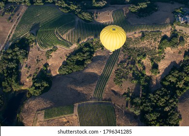 Hot Air Balloon in Napa Valley - Shutterstock ID 1796341285