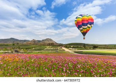Hot air balloon over cosmos flower with blue sky
