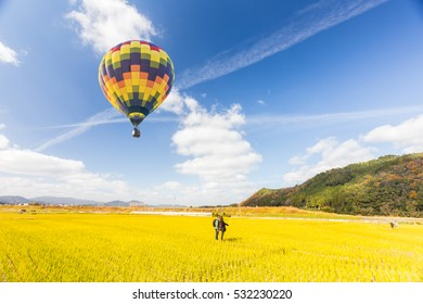 hot air balloon over over the green paddy field. Composition of nature and blue sky background at japan