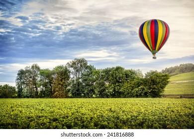 Hot air balloon over the vineyard at the sunset. Borgogne. France