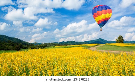 Hot air balloon over yellow flower fields and blue sky background