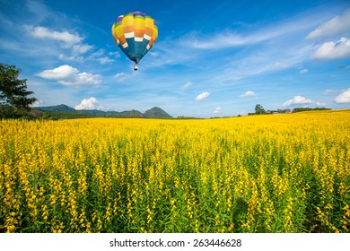 Hot air balloon over yellow flower fields against blue sky
