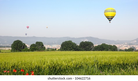 Hot air balloons landing in a field in Vic, Spain.