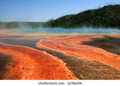 The hot basin with geysers in Yellowstone National Park
