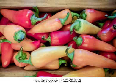 hot caribe peppers are  in a pile