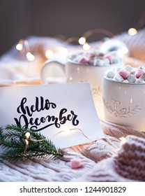 Hot chocolate with marshmallows with card Hello December and twig of pine