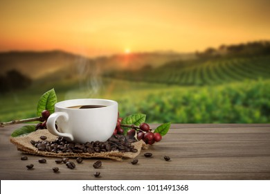 Hot coffee cup with fresh organic red coffee beans and the roasted coffee beans on the wooden table and the plantations background with copy space for your text.