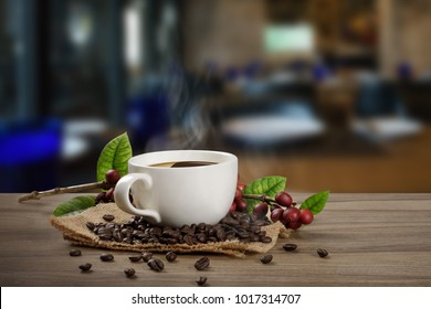 Hot Coffee cup with fresh organic red coffee beans and the roasted coffee beans on the wooden table in the  shop background with copy space