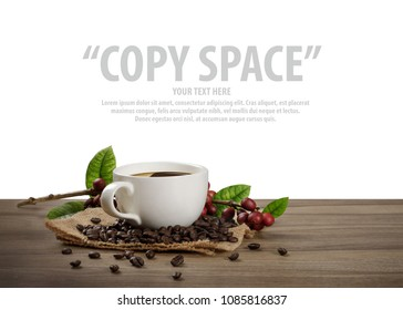 Hot coffee cup with fresh organic red coffee beans and the roasted coffee beans on the wooden table isolate in white background with copy space for your text