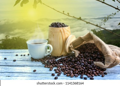 Hot coffee cup with organic coffee beans on the wooden table and the coffee trees background.