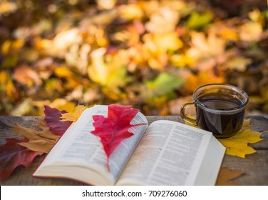 Hot coffee and red book with autumn leaves on wood background - seasonal relax concept.