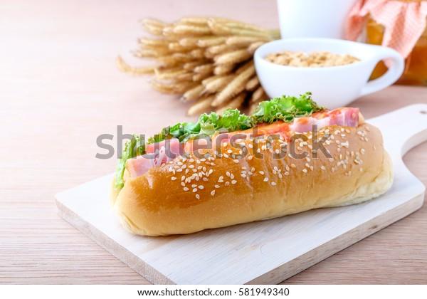Hot dog on wood background