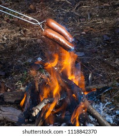 Hot dogs over a small campfire that are starting to burn