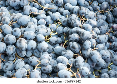 Hot Fresh Organic Grape on the Market Place