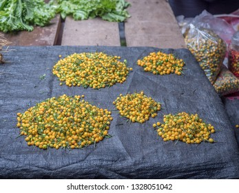 Hot jungle chili. Charapita chili. Chili pepper. Aji Charapita.  The hottest chili in the Peruvian jungle. Belen Market. Belén Mercado. Iquitos. South America.