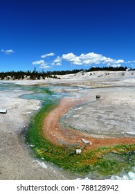 Hot pools and springs - Yellowstone National Park, USA