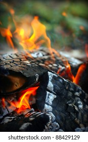 Hot, red burning firewood of campfire