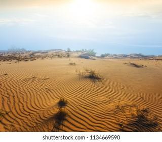 hot sandy desert scene at the sunset