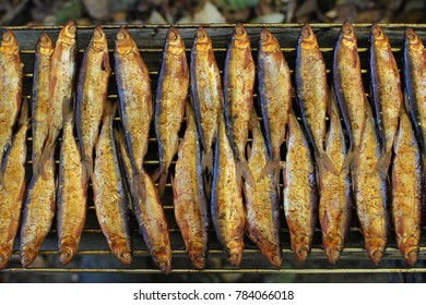 Hot smoked fish whitefish on the grill close to