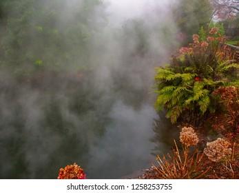 Hot spring at Kuirau Park in Rotorua New Zealand