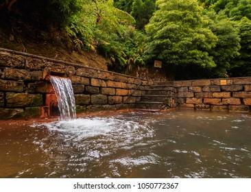 Hot Spring Poca da Dona Beija, Furnas, Sao Miguel Island, Azores, Portugal