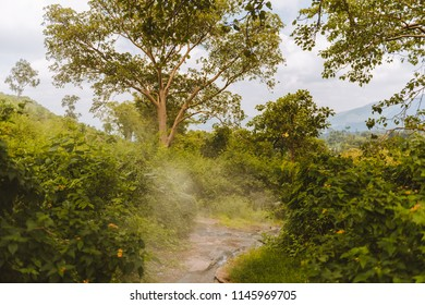 Hot spring water flow in the forest near to lake Awassa, Ethiopia