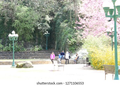 Hot Springs, AR/USA: March 30, 2018 – Visitors rest on rock ledge while visiting Hot Springs National Park. Flowering trees, steam, lampposts, bench also seen. Expanse of white walkway in foreground.