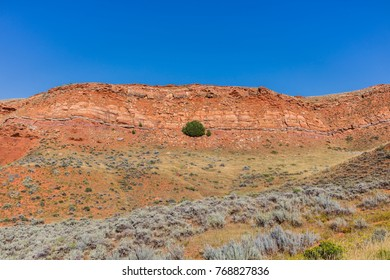 Hot Springs County, Wyoming. Red rocks, sagebrush and a tree along a dirt road that runs around Copper Mountain, and connects several ranches between Shoshoni and Thermop
