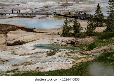 Hot springs inside Yellowstone National Park USA