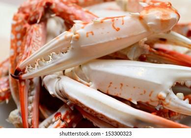Hot Steamed Blue Crabs
