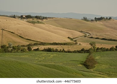 hot summer in the Tuscan countryside with hills sunburned and cypress trees in the province of siena
