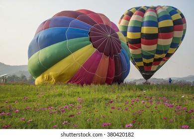 Hot-air balloons over field