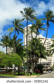 Hotel and palm trees