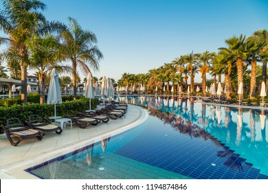 Hotel pool with sun beds and palm trees at a tropical resort