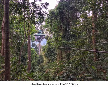 Houayxay, Laos - March 2019: Tree house in the jungle of Laos, Gibbon Experience, Laos