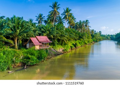 House along a river lined coconut trees in Thailand