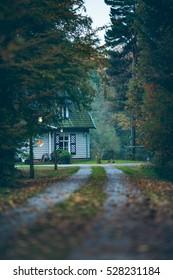 House in autumn forest with driveway at dusk. Exel. Achterhoek. Gelderland. The Netherlands.