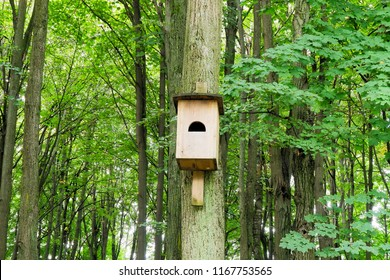 House for bats.